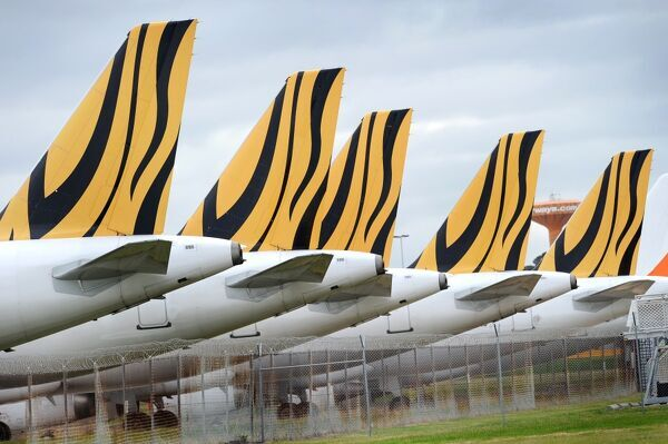 The tails of the five grounded Tiger Airways planes are lined up as they sit on the tarmac at Melbourne's Tullamarine Airport on July 8, 2011