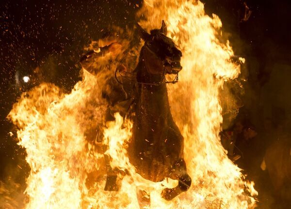 "A horseman jumps over a bonfire in the Spanish central village of San Bartolome de Pinares in the province of Avila, Castile and Leon, during the opening of the traditional religious festival ""Luminarias"" in honour of San Antonio Abad"