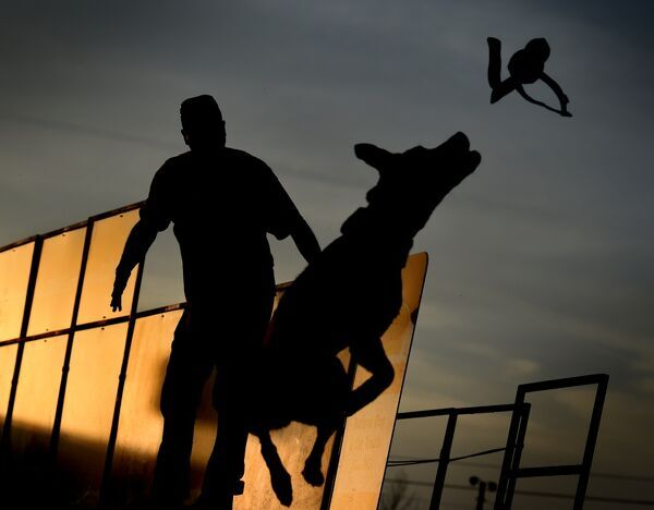 Perry Collier watches as his dog 'Smoke' leaps into the water to record the distance of his jump during the Dock Dogs West Coast Challenge in Bakersfield, California on February 26, 2016