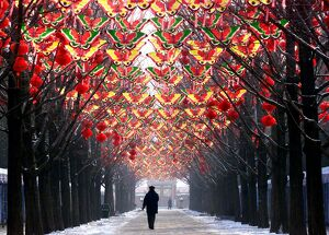 CHINA-NEW YEAR-DECORATIONS-BUTTERFLIES