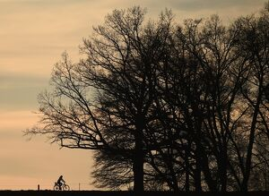 A cyclist passes along a country lane near the small Bavarian village of Puchheim