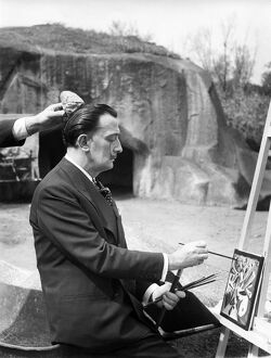 Dali Painting, Vincennes Zoo