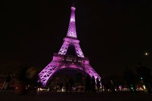 FRANCE-PARIS-EIFFEL TOWER - PINK -HEALTH