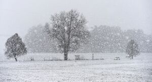 GERMANY - BAVARIA - WINTER WEATHER