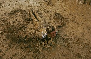 A music fan slides in the mud, at the Glastonbury music festival, Pilton, Somerset