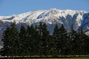 NEW ZEALAND-SOUTH ISLAND-MOUNTAIN