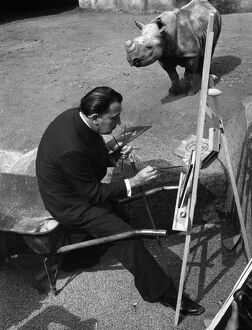 Salvador Dali in front of the rhinoceros, zoo of Vincennes