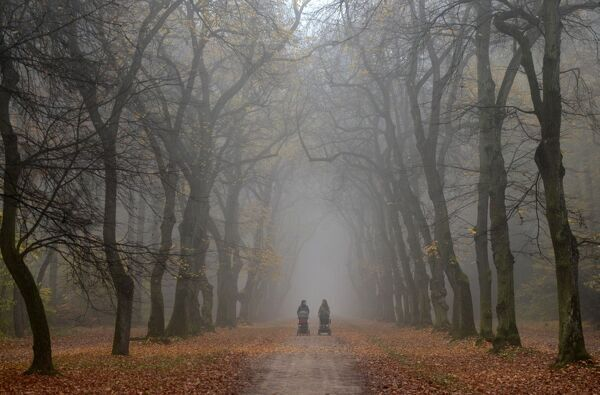 Two mothers push strollers on a foggy autumn day on October 20, 2017 on an alley in a park in Prague. / AFP PHOTO / Michal Cizek