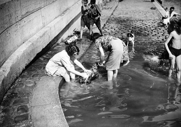 Women bath a dog in the Seine river, in june 1946 in Paris, at the beginning of the 1946 summer. (Photo by - / AFP)