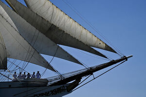 Crew members of Portuguese sailing boat Sagres sail in Tejo River in Lisbon on July 19