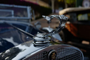 transport/classic cars vehicles elegance et automobile 2019/monaco auto feature